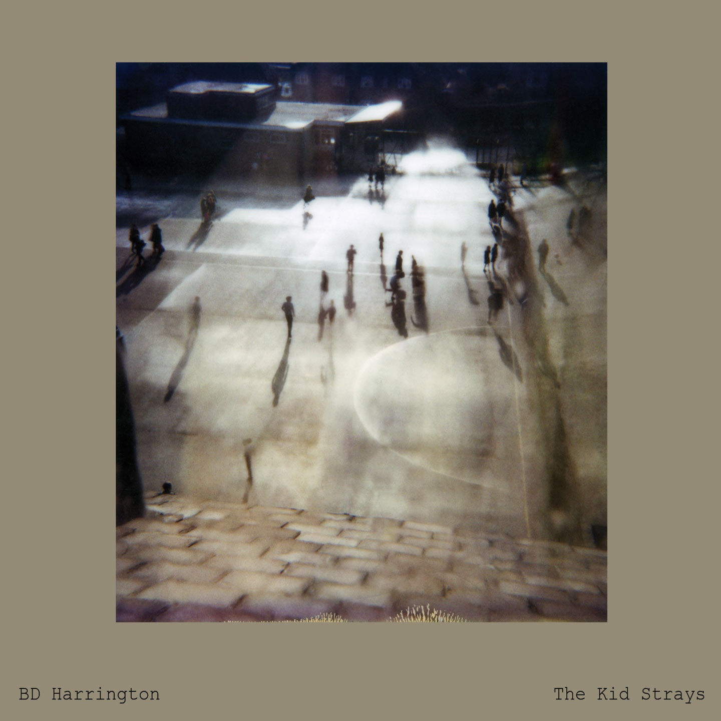 BD Harrington – The Kid Strays